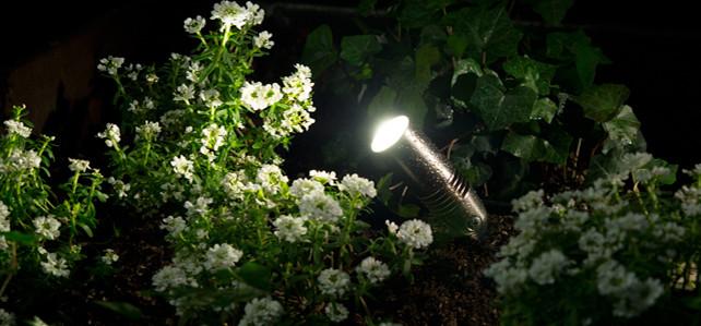 CC LED UP LIGHT